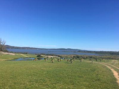 Chacra de 6 Has.con costa y amplia vista a Laguna del Sauce