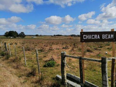 Chacra 6 has en venta, Guardia Vieja - Pueblo Edén