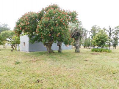 Campo- Chacra en VENTA- entrada de pueblo garzon-35 hectareas
