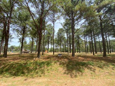 Terreno 2000 m2 en Chacras del Pinar en C° Lussich , excelente  ubicacion , listo para construir .