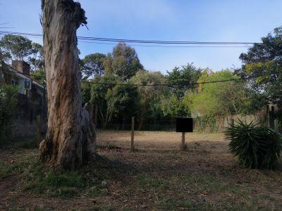 Terreno en Zona San Rafael