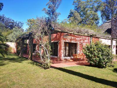 Casa en Venta  y Alquiler en Punta del Este, Pinares, con muy lindo entorno